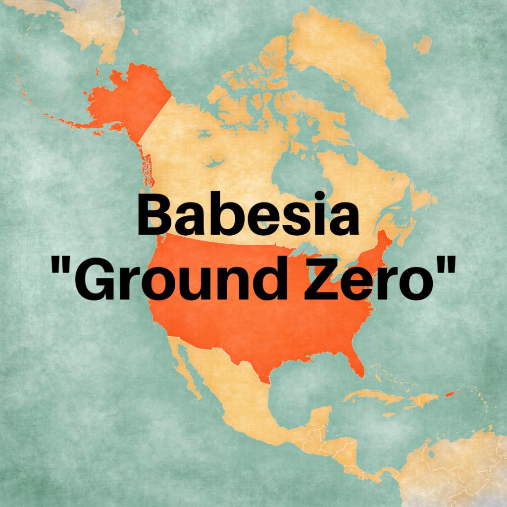 Babesia ground zero