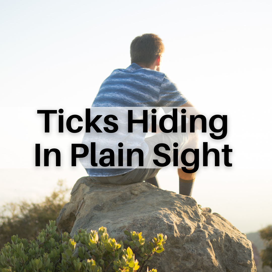 LYME SCI: The ticks you don't see are the most dangerous